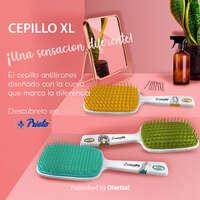 Cepillos XL de Casalfe