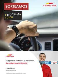 Escobillas Bosch gratis