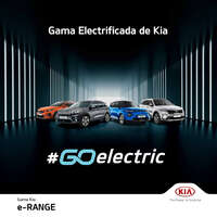 GamaElectrica_cut