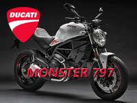 Monster 797