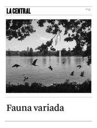 Fauna Variada