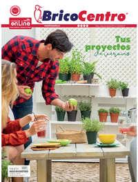 Tus proyectos de verano - Palencia