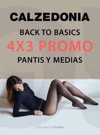 Back to basics 4x3 promo
