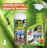 Solución para la plaga de hormigas