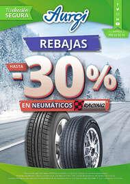 Rebajas hasta 30% en neumáticos racing