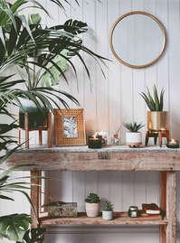 Colección Serene Green